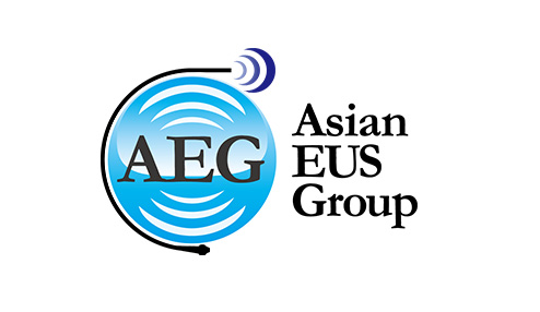 1-Asian EUS Group